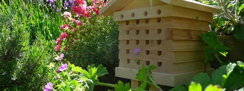 Installer un rucher dans son jardin pourquoi comment - Installer un poulailler dans son jardin ...